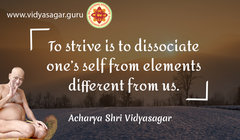 acharya vidyasagar english quotes (226).jpg